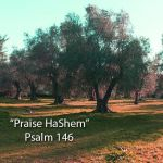 "New praise banjo song! ""Praise HaShem"" (Psalm 146)"