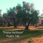 "New praise banjo song! ""Praise HaShem"" (Psalm 146)"